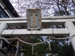 竹生島(8)