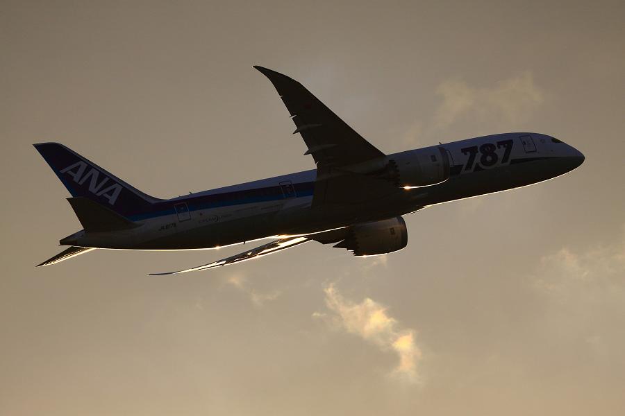 ANA B787-8 Dreamliner / ANA32 (JA817A)@下河原緑地展望デッキ