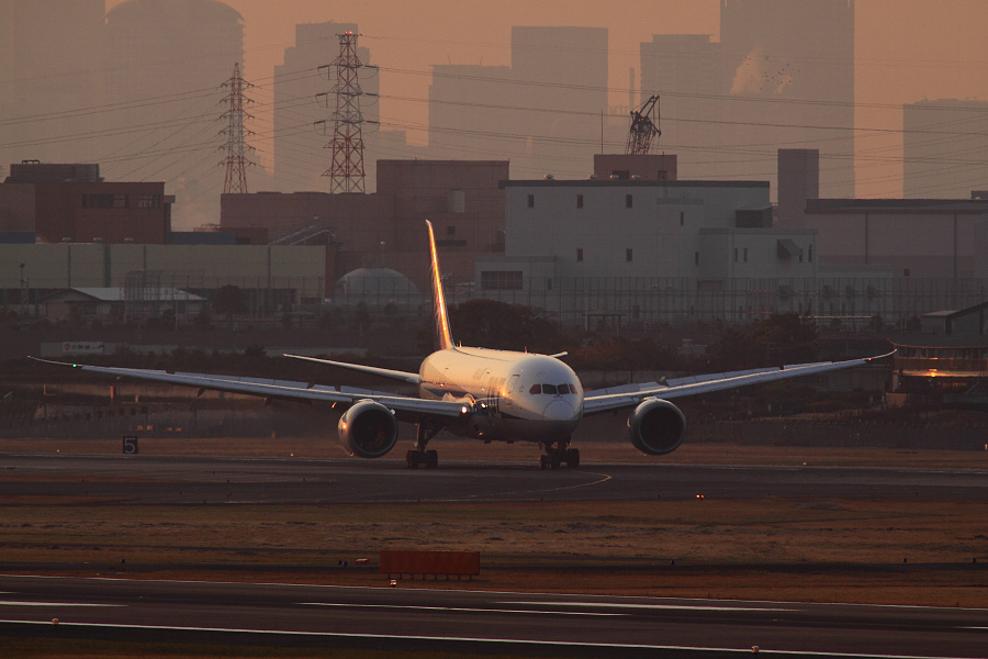ANA B787-8 Dreamliner / ANA961 (JA807A)@下河原緑地展望デッキ