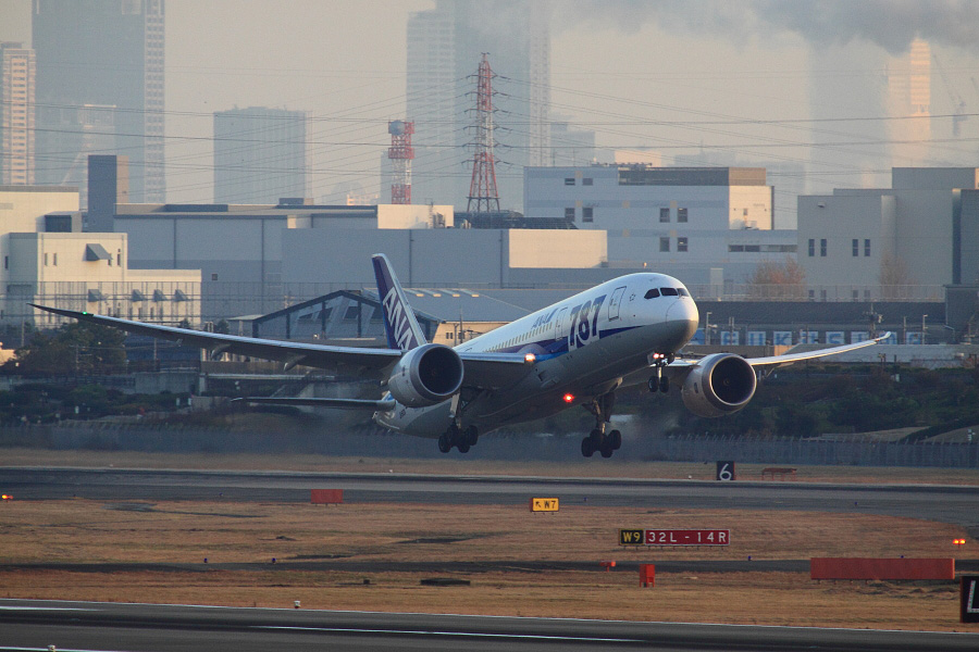 ANA B787-8 Dreamliner / ANA32 (JA810A)@下河原緑地展望デッキ
