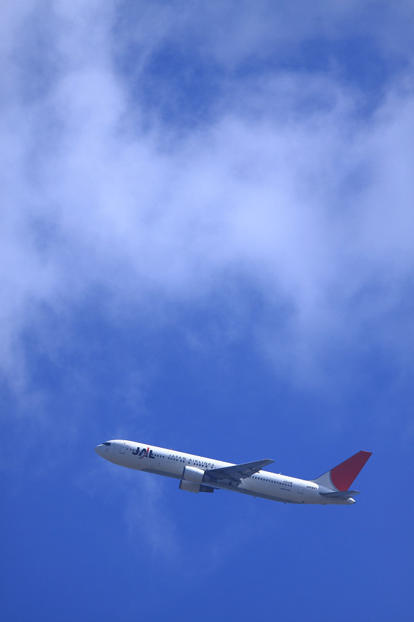 JAL B767-346 / JAL2001 (JA8987)@瑞ヶ池公園