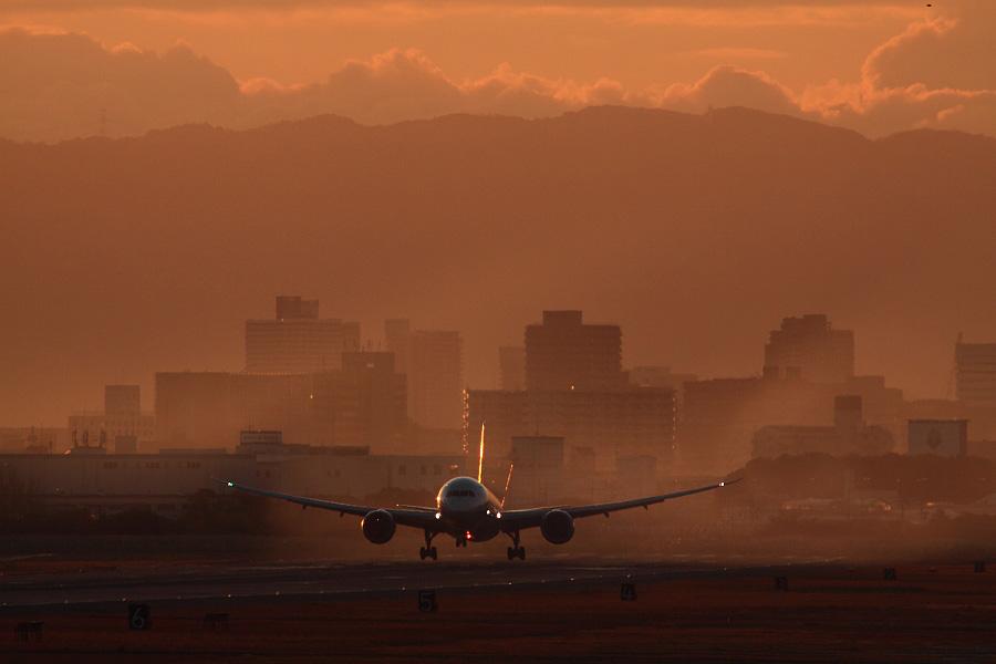 ANA B787-8 Dreamliner / ANA961 (JA807A)@RWY14Rエンド・猪名川土手