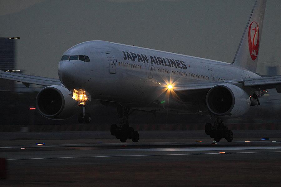 JAL B777-289 / JAL125 (JA008D)@伊丹スカイパーク