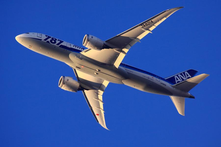 ANA B787-8 Dreamliner / ANA32 (JA821A)@自宅前