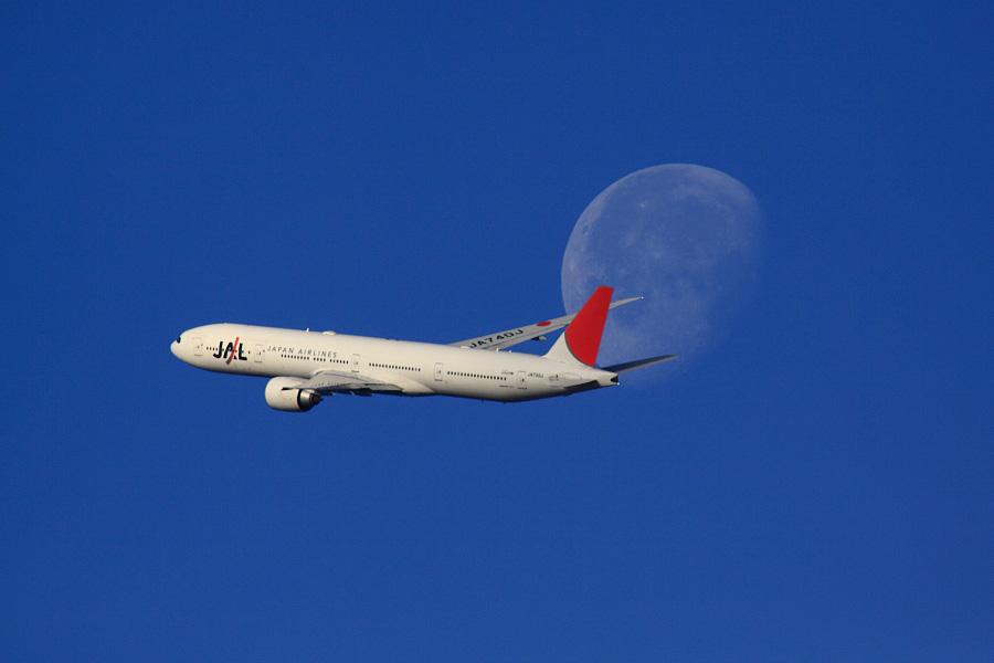 JAL B777-346ER / JAL3002 (JA740J)@RWY14Rエンド・猪名川土手