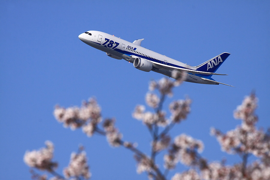 ANA B787-881 ANA32@瑞ヶ池公園(by EOS 50D with EF100-400mm F4.5-5.6L IS USM)