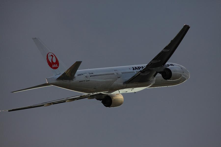 JAL B777-289 / JAL124 (JA8979)@下河原緑地展望デッキ