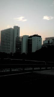 F1010724.jpg