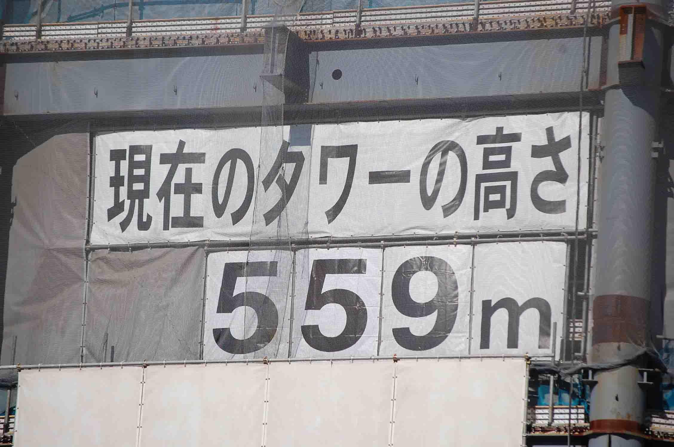 20110125亀戸天神 031A