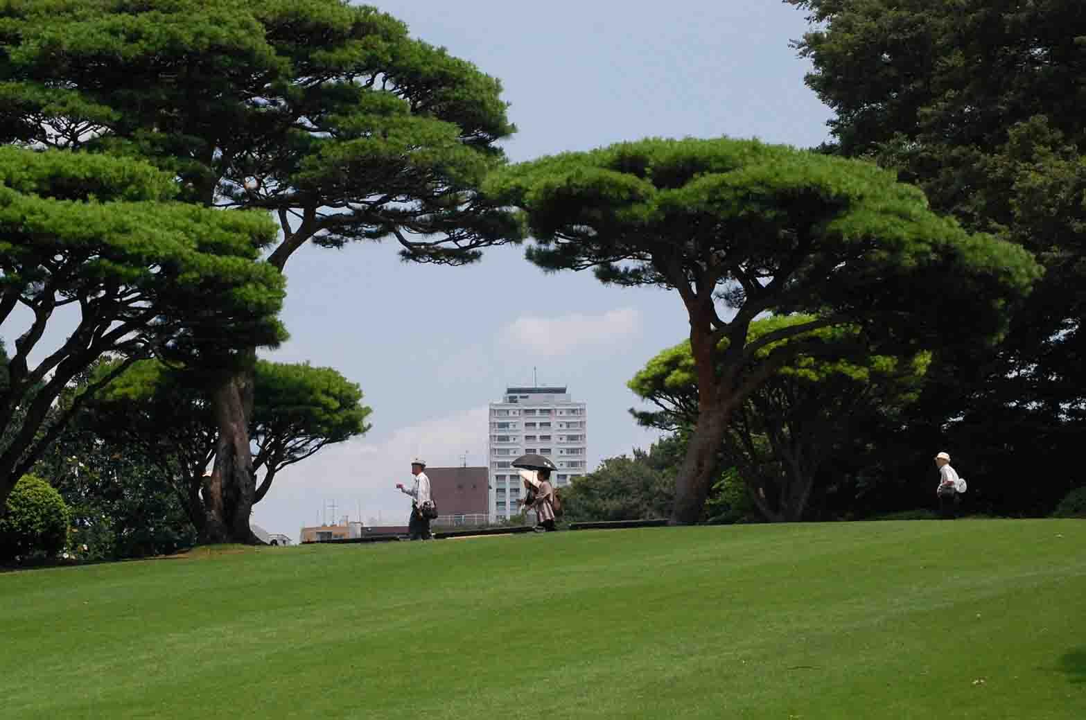 20110706新宿御苑 035A