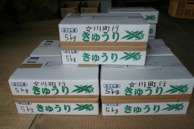 女川0901
