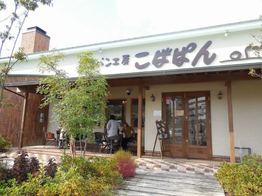 2013.11.22 三景園 068