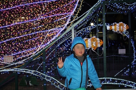 2013.11.24 おゆうぎ会 222