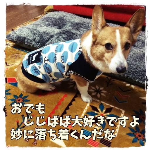 jijibabajiro.jpg