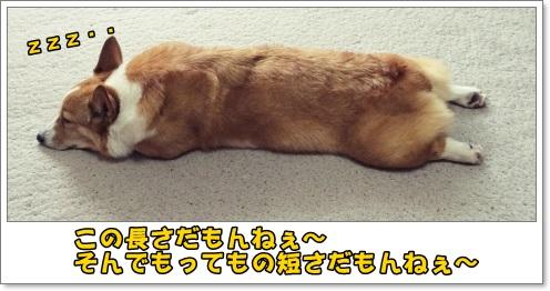 nagai11.jpg