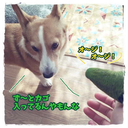 somuke5.jpg