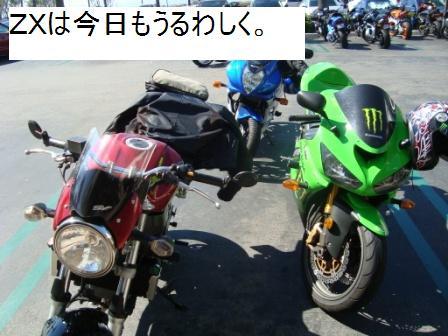 10-10 ride zx