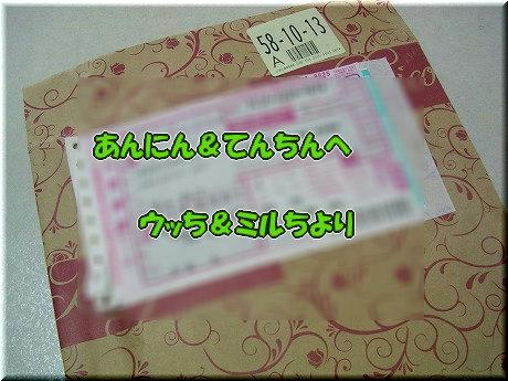 SANY7032_20100907095550.jpg