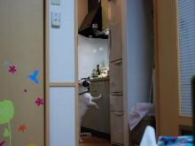 ニールの部屋