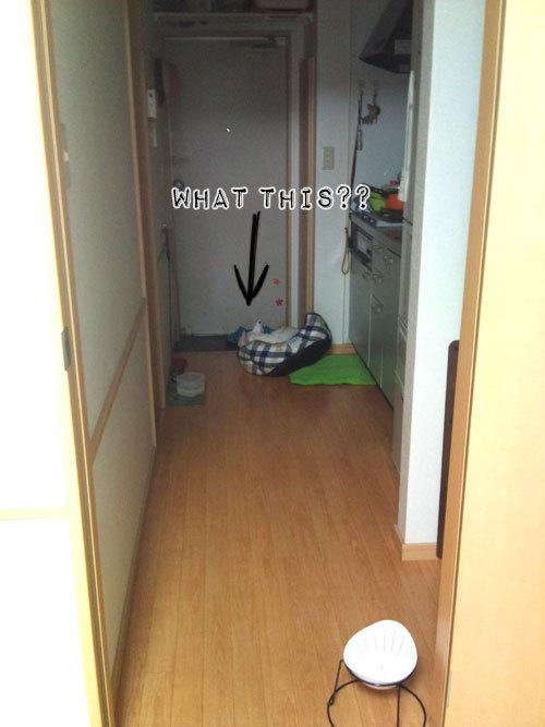 フレブル*ニールの部屋