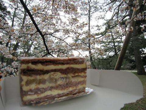 桜の真下でケーキタイム