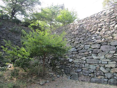 すごい石垣