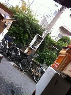 kyoubashi11-12-14 028