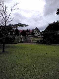 薬草センター
