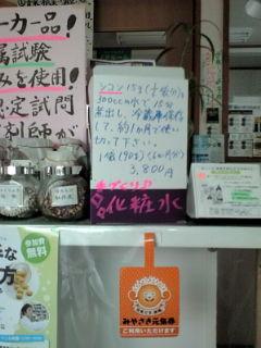 シコン陳列棚101012