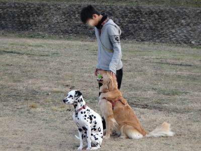 snap_noaruenolife_20123222116.jpg