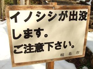 2011.01第三金曜日 015