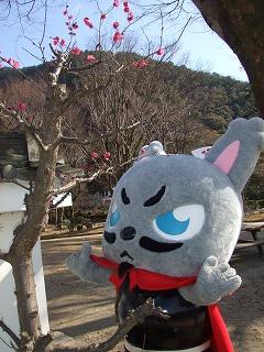 2011.02お散歩 010