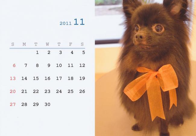 11_convert_20111104215144.jpg