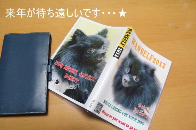 ノエ手帳+001_convert_20110927222732