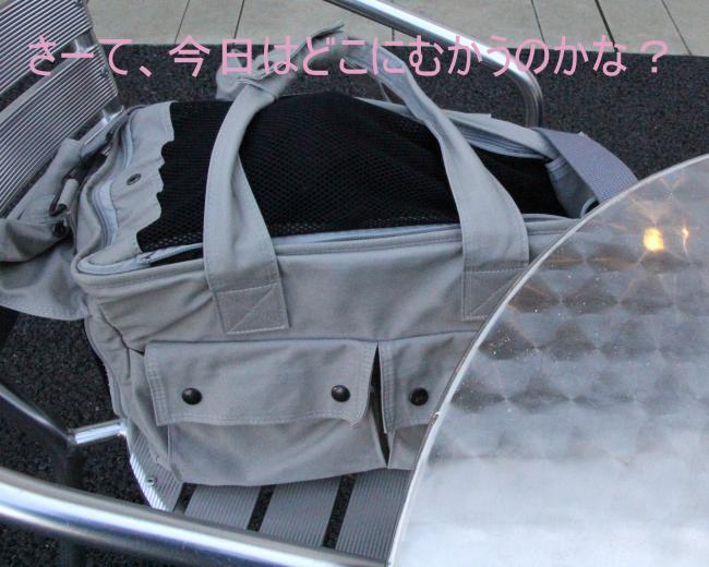 ハロウィン1_convert_20111030205806