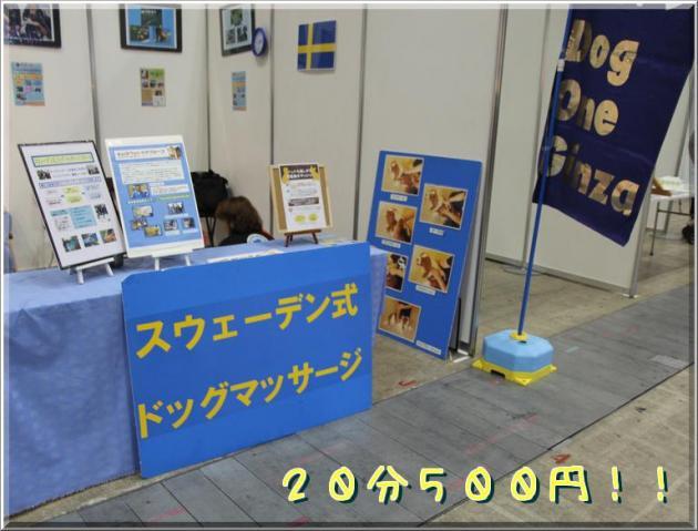 Iurj8MFHZ0aEgcl_convert_20120506175142.jpg