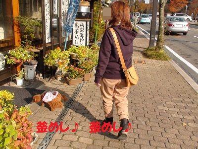 DSC01094_20101109160034.jpg