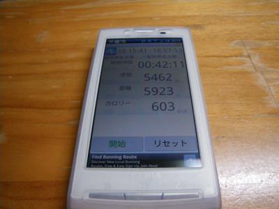 IMGP0238_convert_20101203201941.jpg