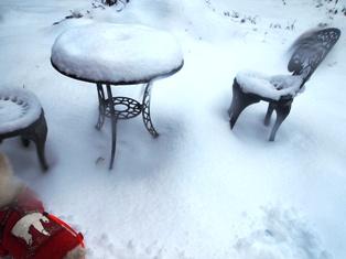 雪が降ったよ~ 027