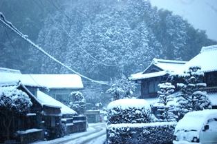 今日も雪が・・・ 030