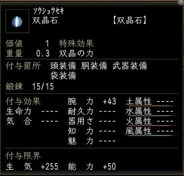 20110304_腕力石3