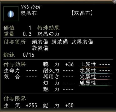 20110304_腕力石