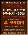バリニーズ60分2014.1.2
