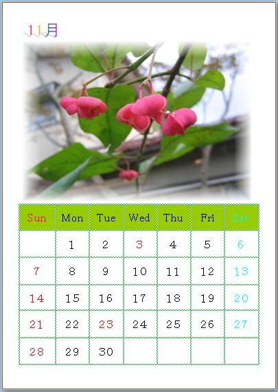 11 月のカレンダー