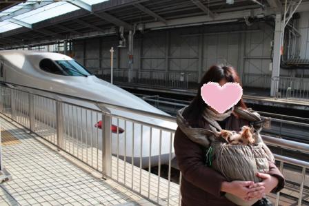 コピー ~ 記念に新幹線の前で撮ってもらったよ