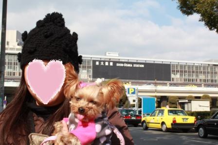 コピー ~ 新大阪まで帰ってきたよ