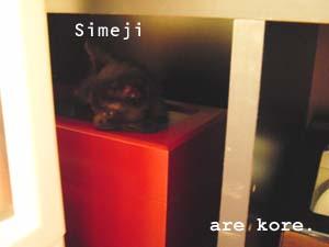 CIMG0828.jpg