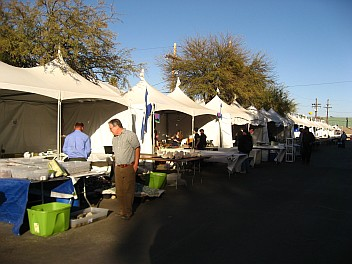 Tucson Mineral Show 2011 - 1