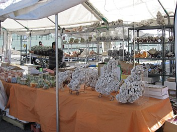 Tucson Mineral Show 2011 - 2