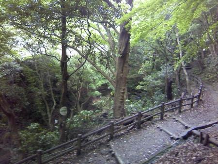 0601_kuragari4.jpg